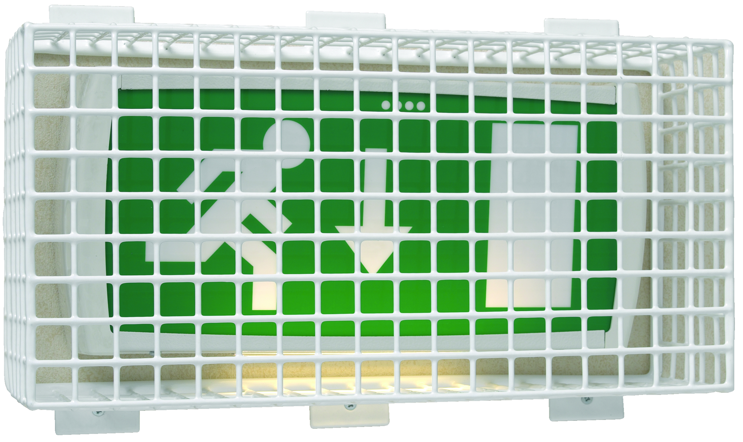 Emergency Light Cage