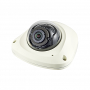 2MP Network Vandal Flat Dome Camera